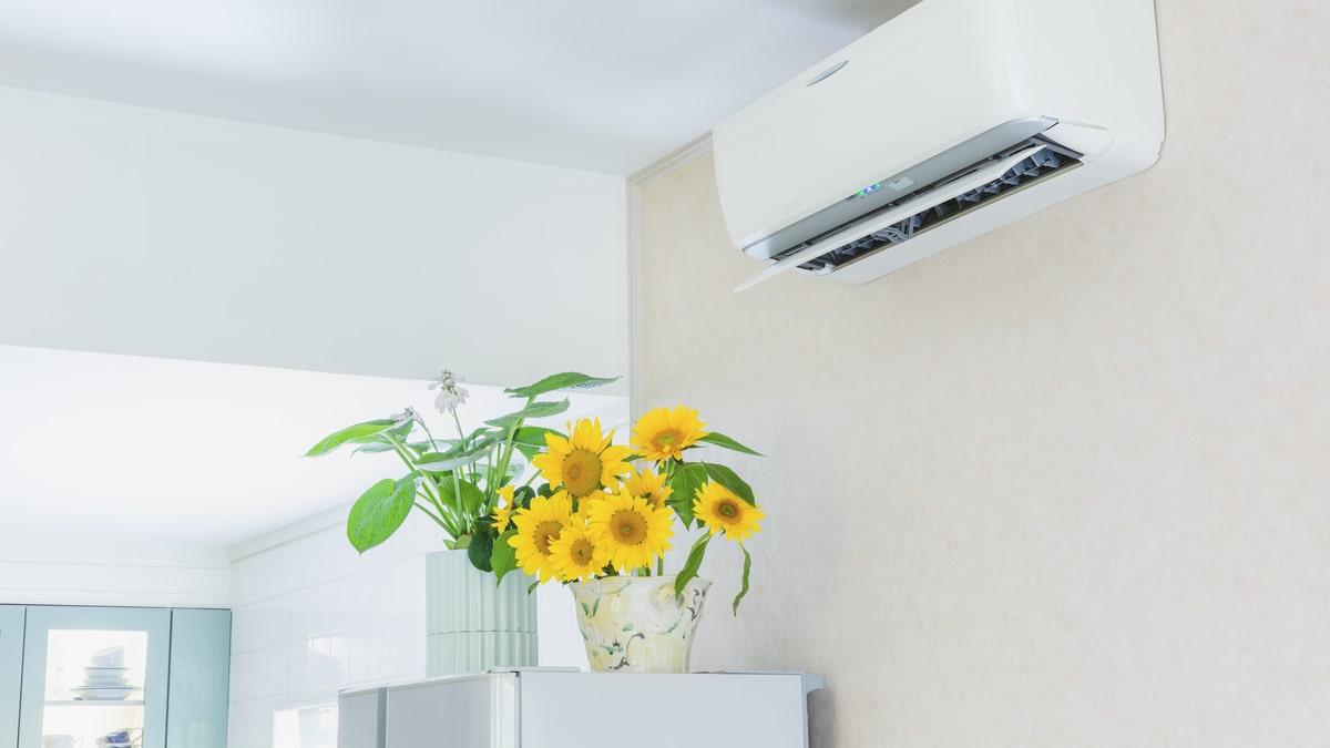 熱中症対策にはエアコンが有効!エアコンとうまく付き合っていくコツ