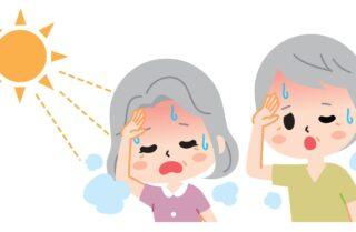 夏に多い病気に要注意!熱中症、脳梗塞、冷房病など症状と対策を解説